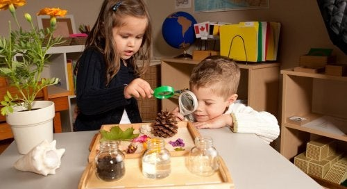 Montessori Keşif