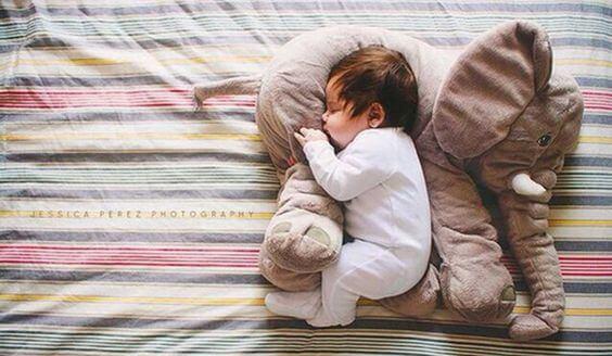 oyuncak fil ve uyuyan çocuk