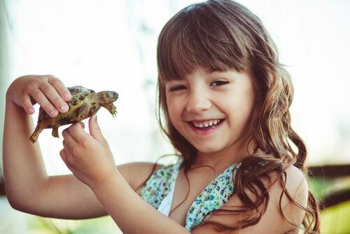 kaplumbağa tutan çocuk