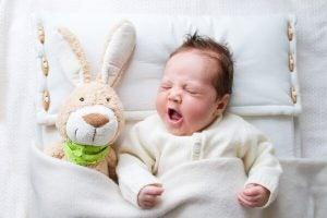 oyuncak tavşan ve bebek