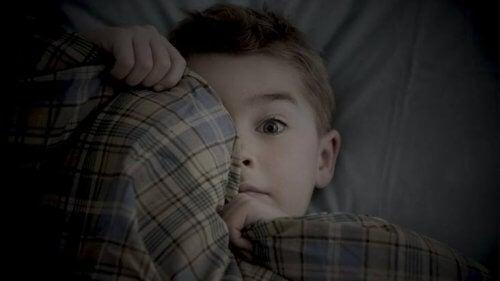 saklanmış erkek çocuğu