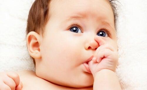 parmağını emen mavi gözlü bebek