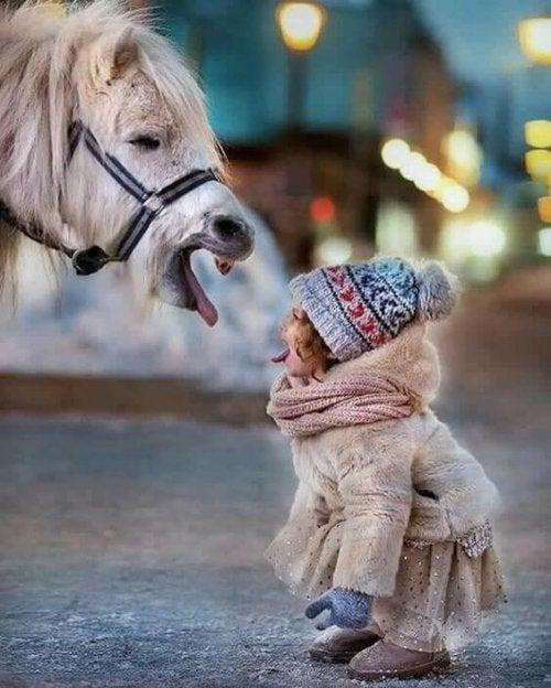 Atla oynayan çocuk