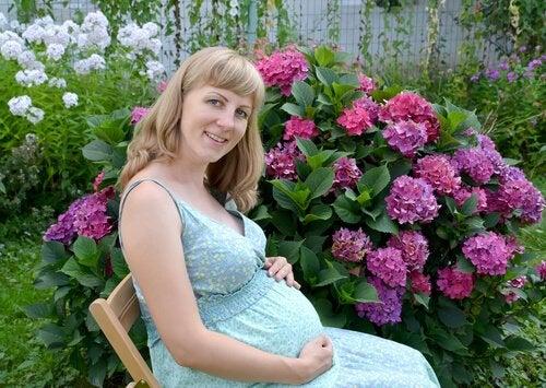 mor çiçekler ve hamile kadın