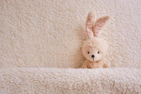 Uyumak İsteyen Tavşan