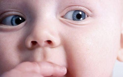 Annelerin tavsiye ettiği 9 bebek ürünü