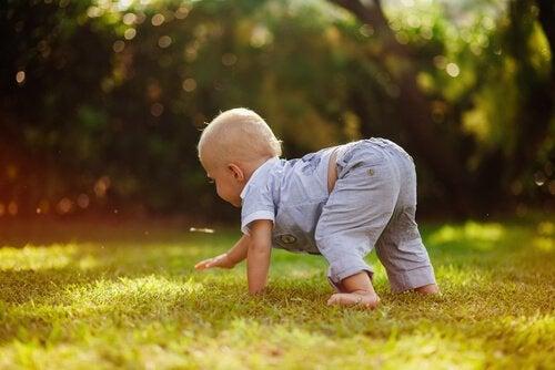 çimde emekleyen bebek