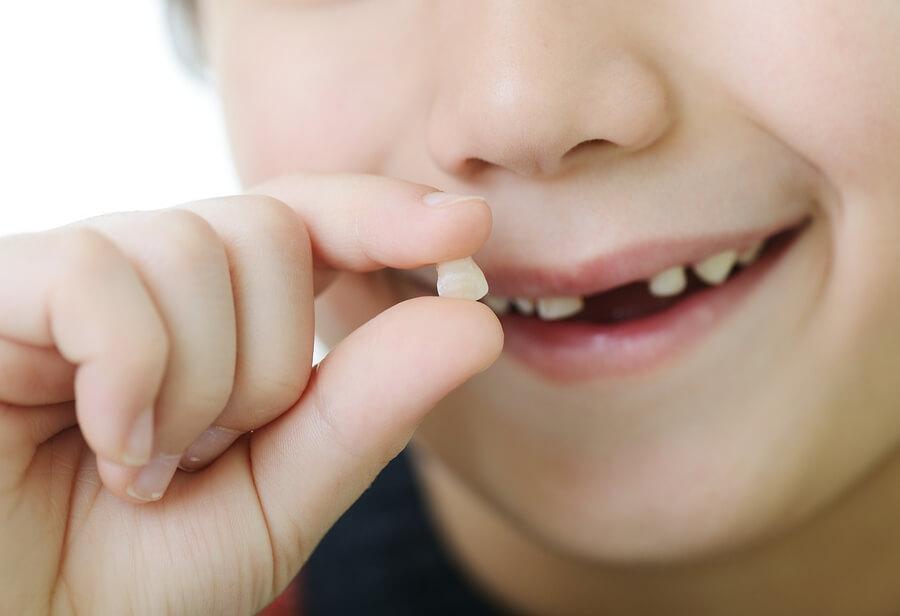 Süt Dişleri Hangi Sırayla Dökülür? Kalıcı Dişler Ne Zaman Çıkar?
