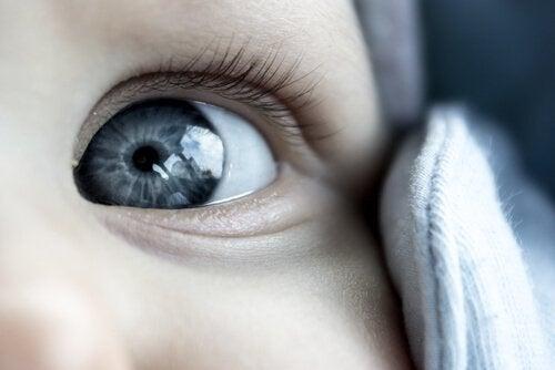 Parlak gözlü bebek
