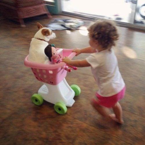 köpekle koşan çocuk