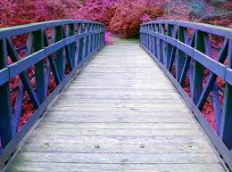 Renkli köprü