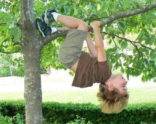 ağaçta çocuk