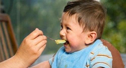 Bebeğinizin İlk Yemeği: Katı Gıda Vermeye Başlamak