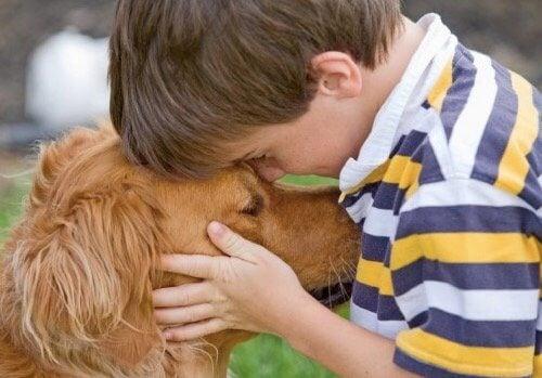 Evinizde Evcil Hayvan Olmasının Yararları