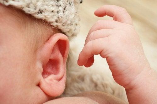 kulak enfeksiyonları
