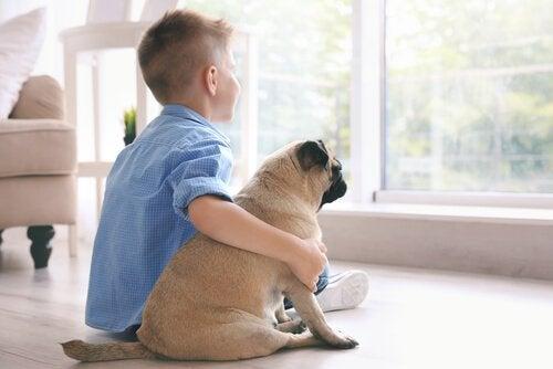 Çocuklar için Küçük Köpek Cinsleri