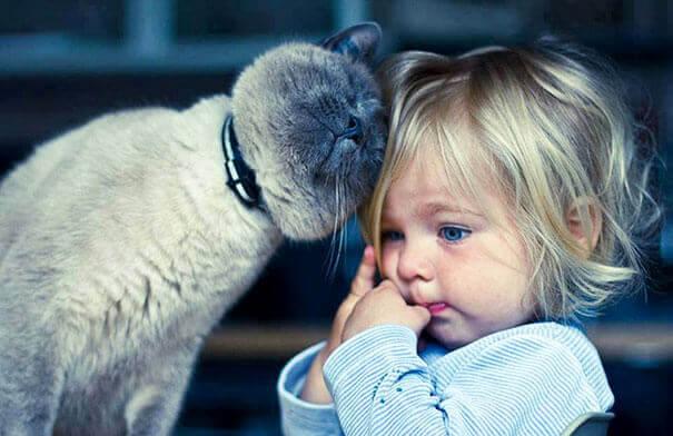Çocuklar için En İyi Evcil Hayvanlar