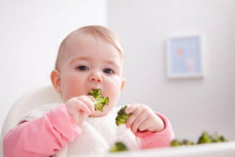 brokoli yiyen bebek