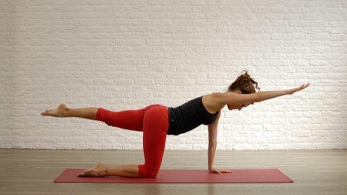 sırt kasları için egzersizler
