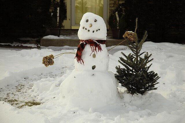 kardan adam yapmak