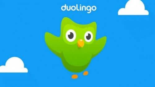 duolingo programı