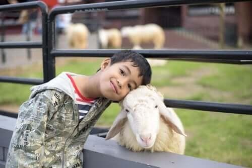 çocuk ve koyun