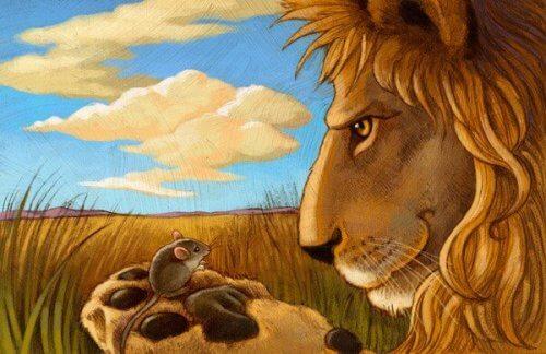 fare ve aslan