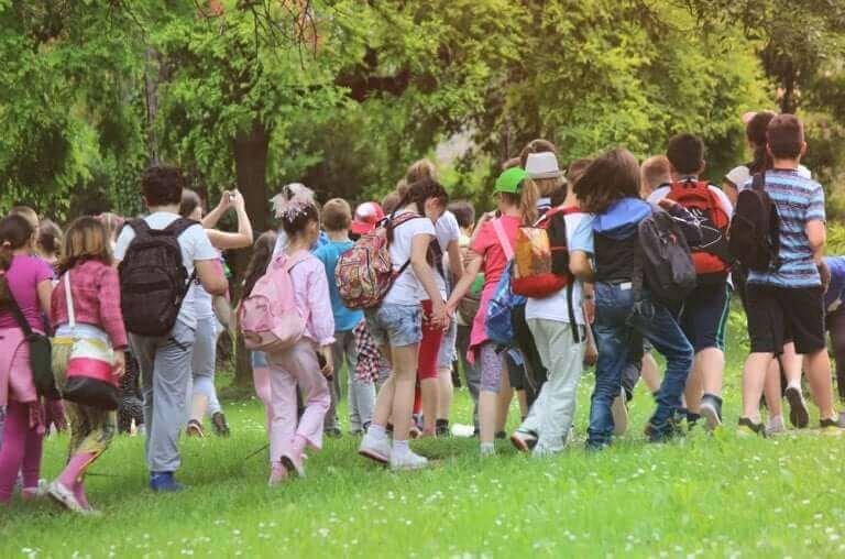 Okul gezisiyle doğada gezen çocuklar