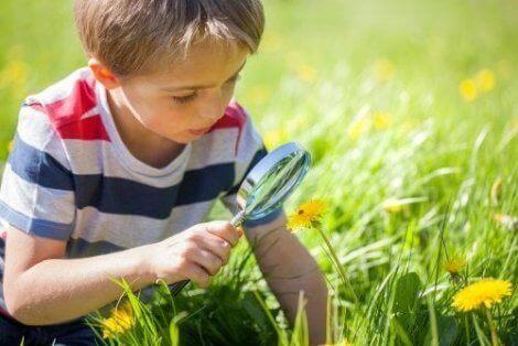 Büyüteçle çiçeklere bakan çocuk