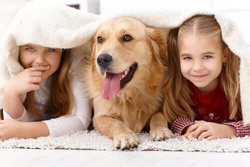 Çocuklar ve köpek