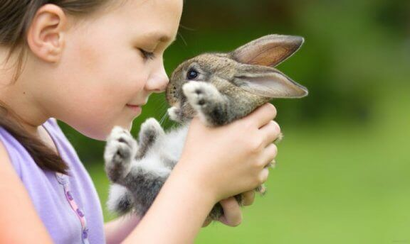 Yavru tavşan ile oynayan çocuk