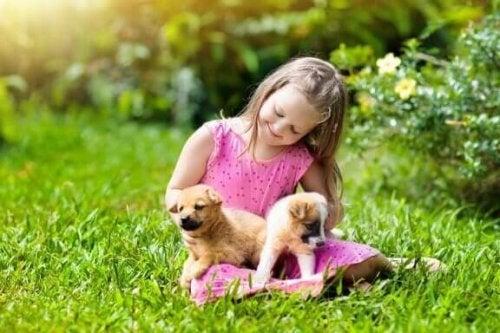Kücük kız çayırda yavru köpeklerle onuyor