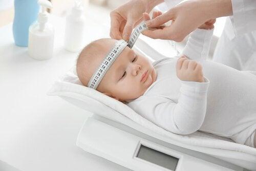 bebeğin boyunu hesaplamak