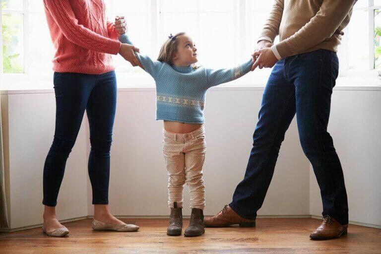Ebeveynler İçin Velayet Türleri