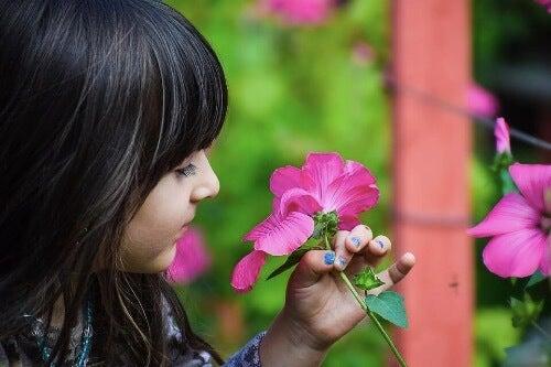 Çocuklar İçin Botanik Dersleri: Bu İpuçları İşinize Yarayacak