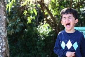 Öfke Nöbeti ve Çocuklar