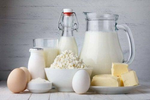süt ürünleri ve yumurta