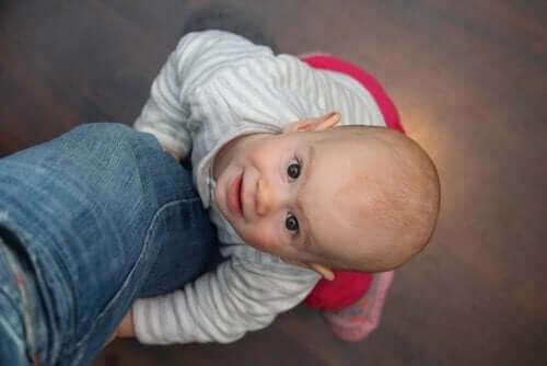 Çocuklarda Duygusal Gelişim Konusunu Açıklayan Teoriler