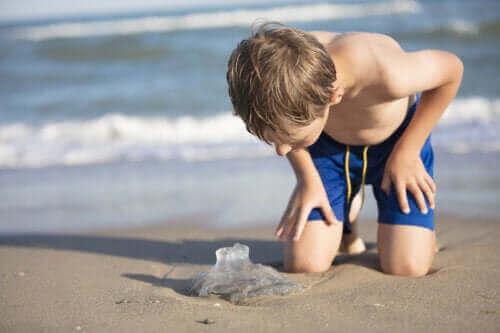 Çocuklarda Denizanası Sokmaları: Bilmeniz Gerekenler