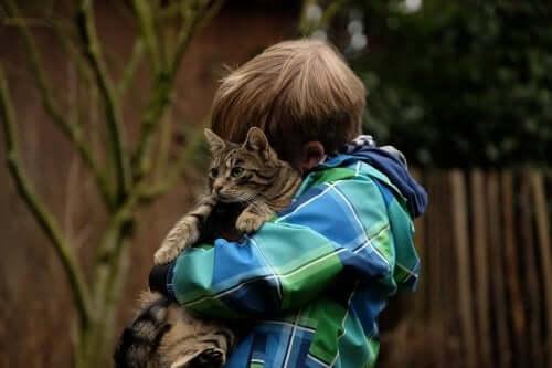 Kediye sarılan yeşil mavi ceketli erkek çocuk