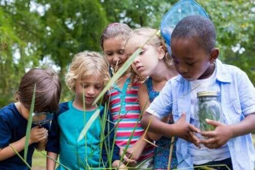 Zygmunt Bauman: öğrenmeye hevesli çocuklar