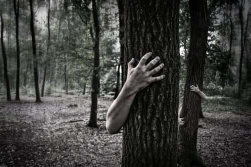 ağaca sarılmış eller