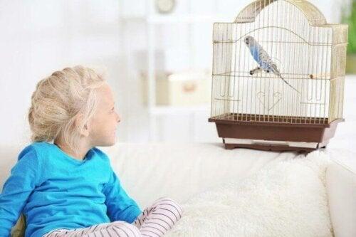 Çocukların Evcil Hayvan Sahiplenmesinin Avantajları
