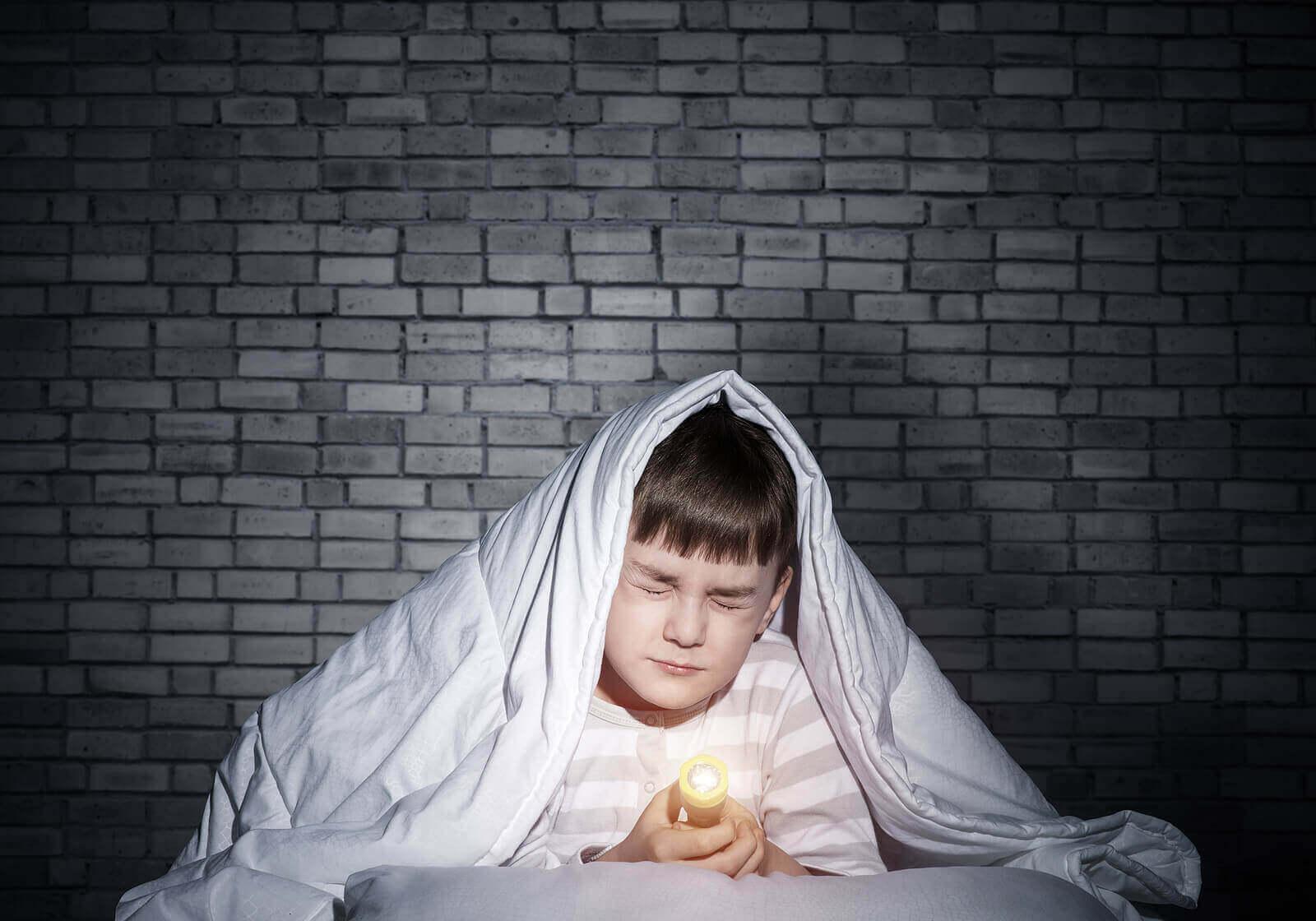 Karanlıktan korktuğu için battaniye altında fenerle oturan çocuk