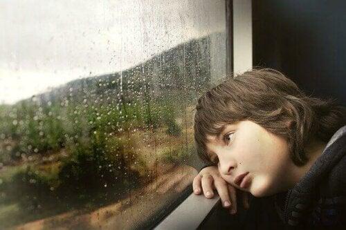 Camdan dışarıya bakan bir çocuk.