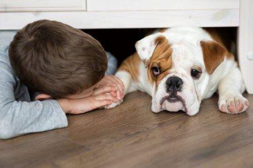 Köpeğinin elini tutan çocuk