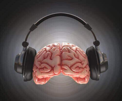 müzik zeka ilişkisi