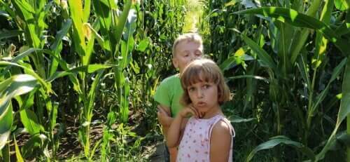 Çocuklarda 7 Yaş Krizi: Neleri Kapsar?