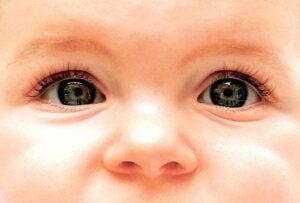 bebek gözlerinin renk