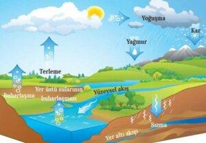 su döngüsü detaylı